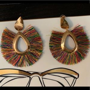 Accessories - Colorful fringe earrings